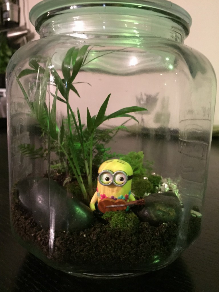 """Build a terrarium, #110 on my list. I call it  """"It is a mad world in Minion paradise"""""""